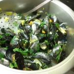 fertig gekochte Muschel zu Servieren