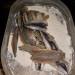 Sardellen in einer Schale im Mehl wälzen