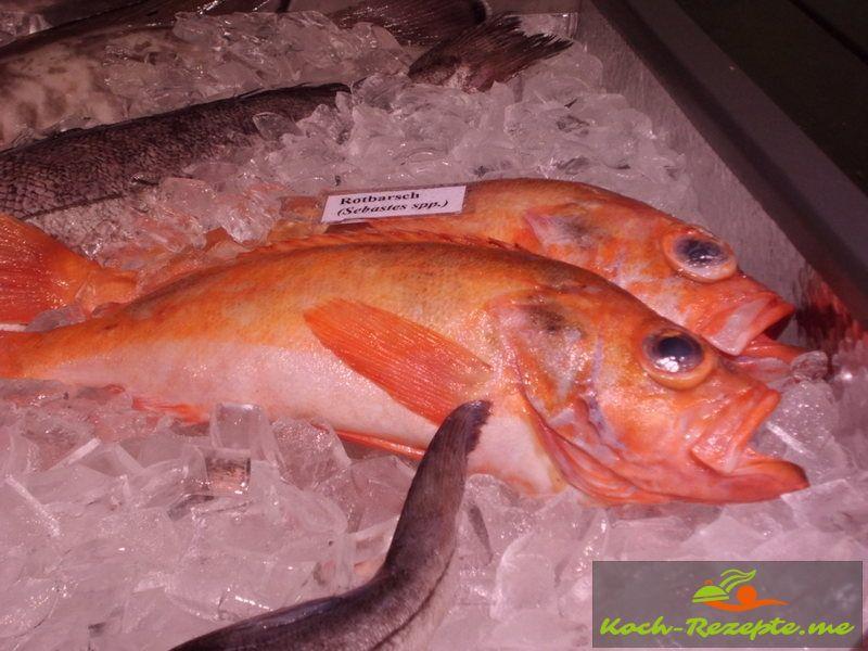 unbelasteten fisch kaufen
