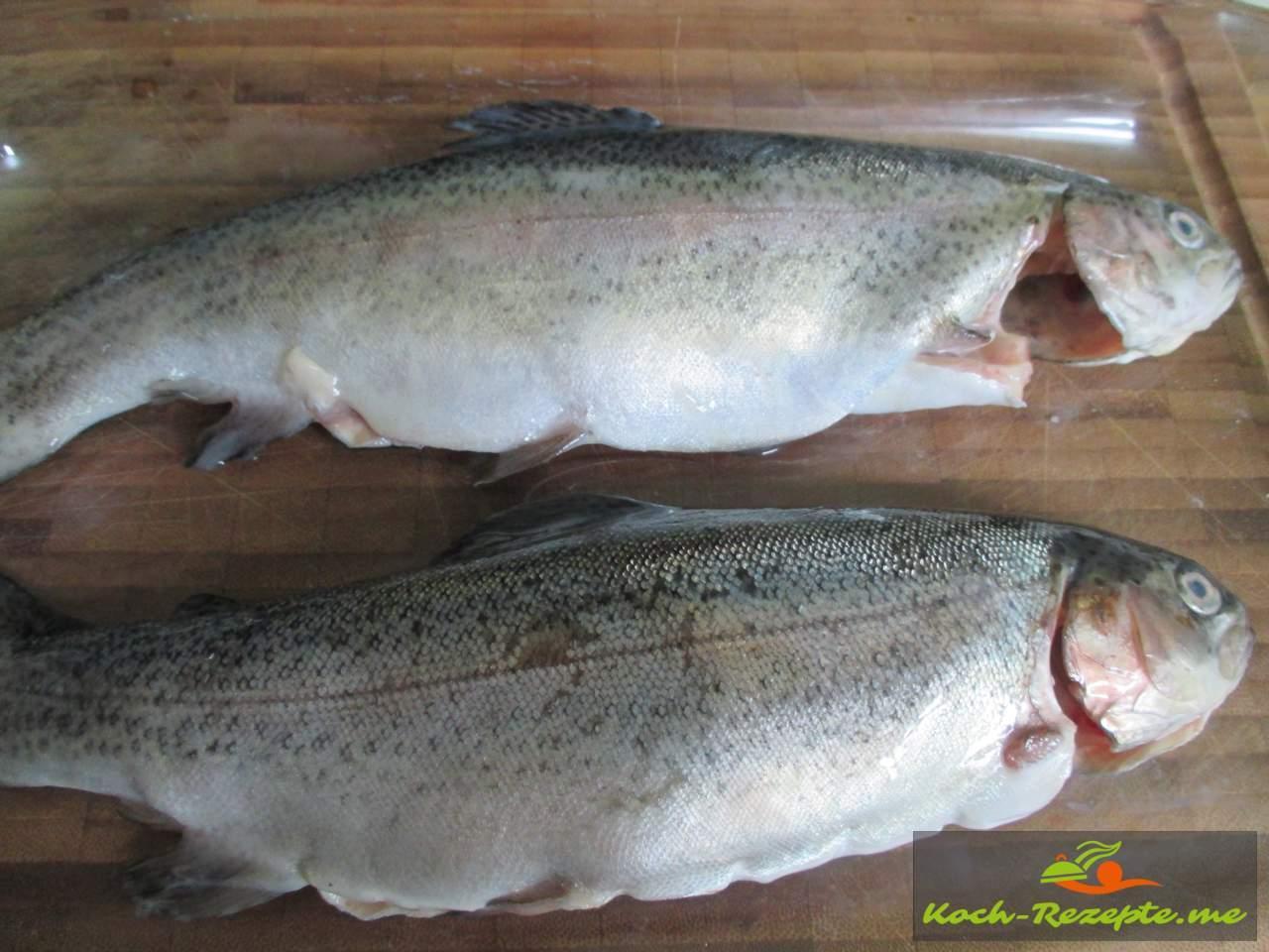 Küchenfertige Forellen ( frische Regenbogenforellen)  nicht den Schleim entfernen