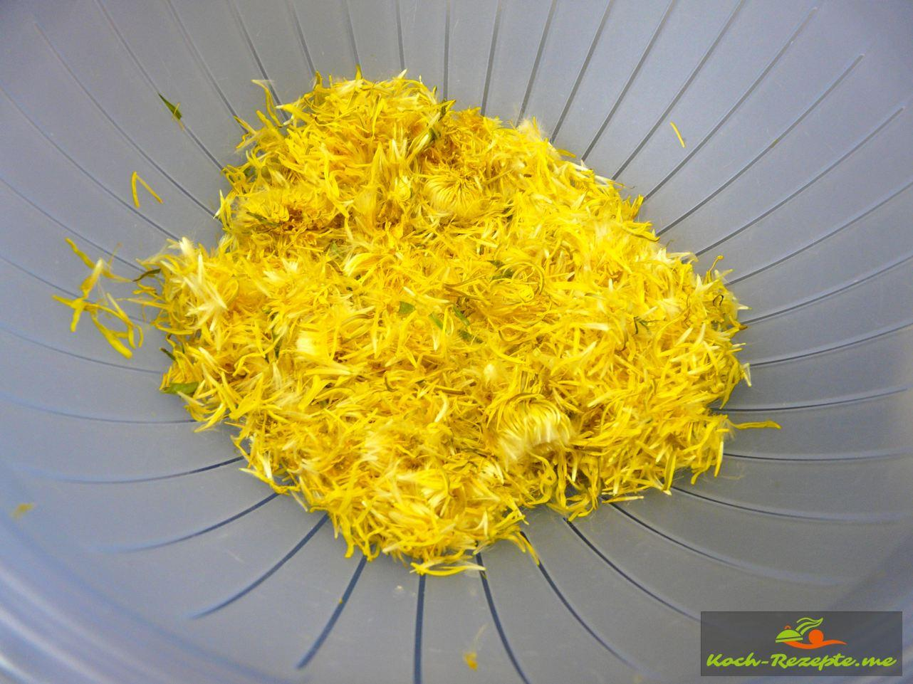 Die abgezupften Blüten des Löwenzahn Bio Löwenzahn-Safran Gelee.