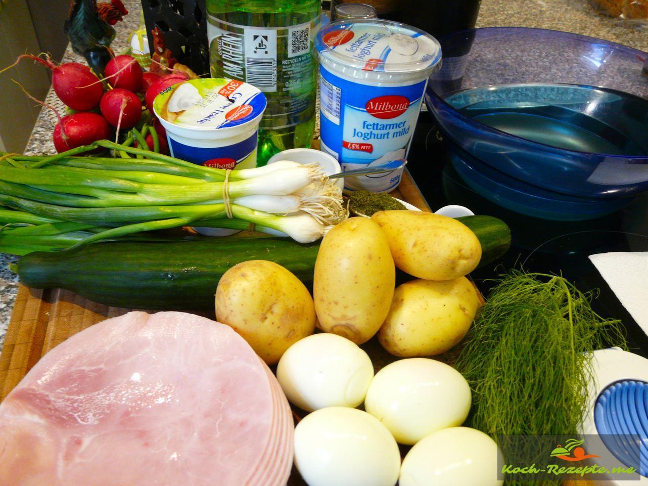 Zutaten für eine Okroschka kalte Suppe