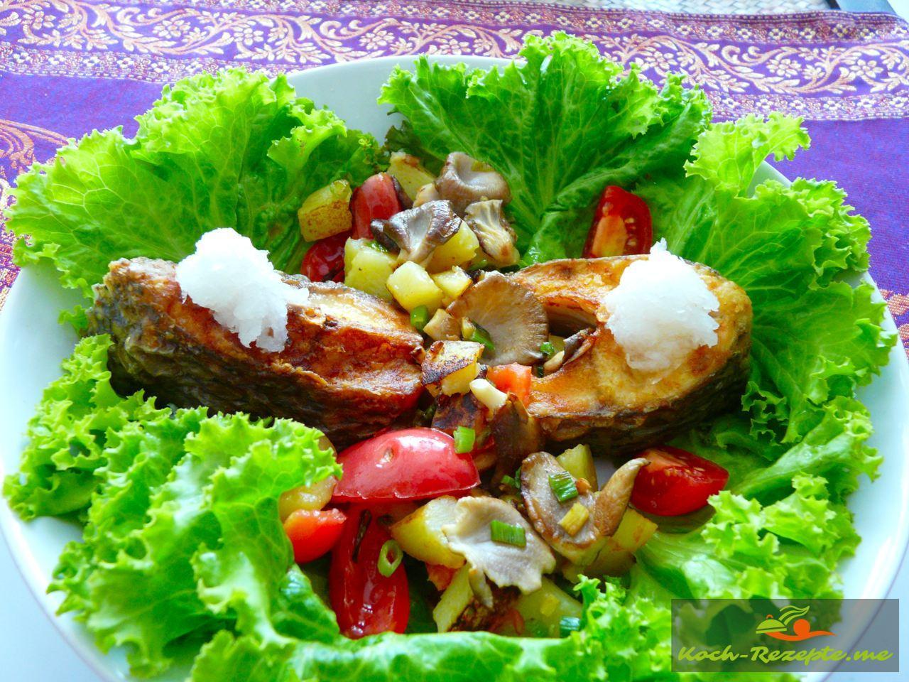 Fertig angerichtet der Teller im Salatbett White Snapper mit Kartoffeln-Austernpfanne