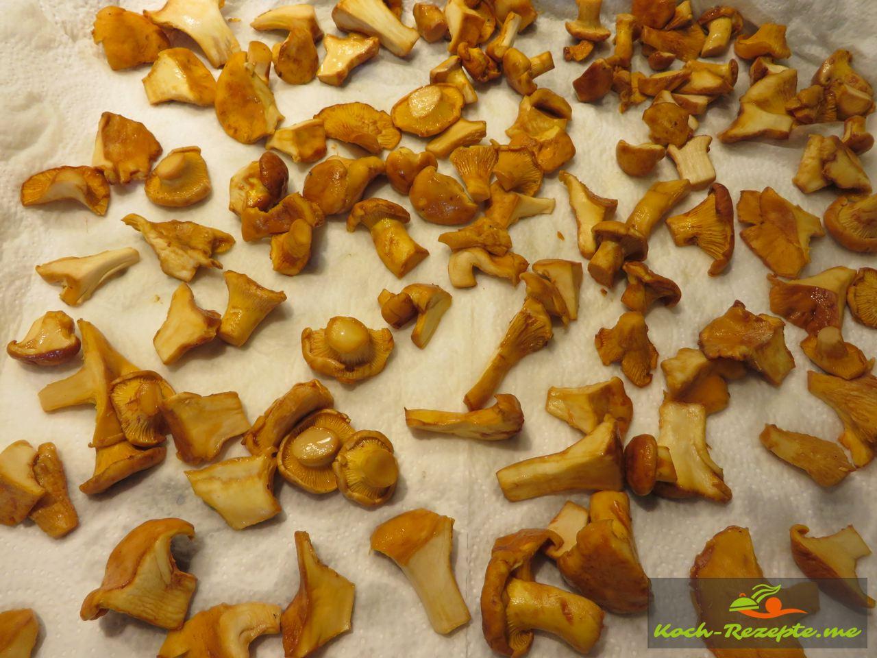 Pfifferlinge einfrieren mit Tipps Schritt für Schritt auf dem Küchentoch trocknen und kalt werden lassen