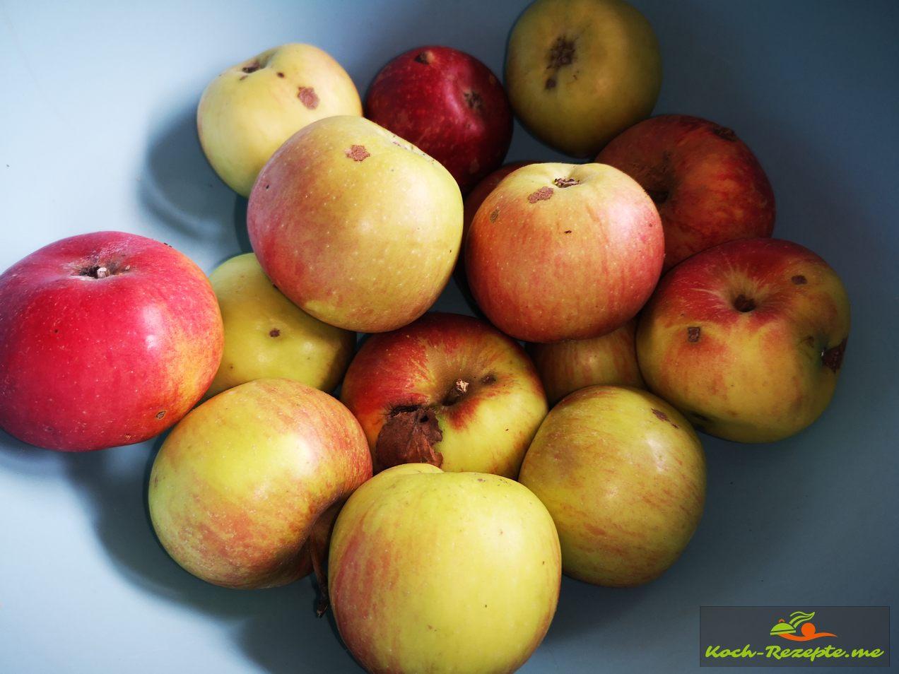 Säuerliche Äpfel